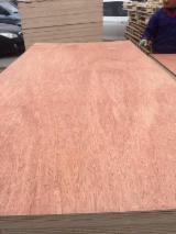 4.5 mm Bintangor Plywood for Packing