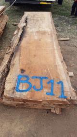 硬质木材 - 毛边木材 – 木堆 - 木球