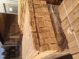 Find best timber supplies on Fordaq - White Birch Planks 25 mm