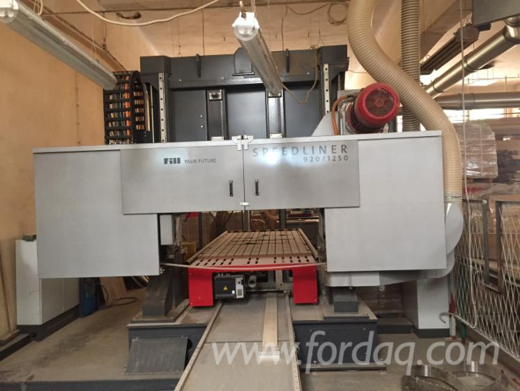 New-FILL-Solid-Wood-And-Panel-Sawing-Machines---Other-For-Sale