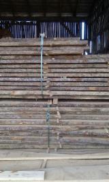 Laubholz  Blockware, Unbesäumtes Holz Lettland - Loseware, Eiche