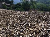 Energie- Und Feuerholz Sägehackschnitzel - Bambus Sägehackschnitzel