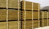 Drewno Iglaste  Kłody Na Sprzedaż - Palisada Toczona, Sosna Zwyczajna  - Redwood