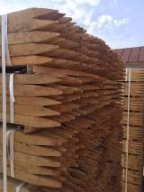 Laubschnittholz, Besäumtes Holz, Hobelware  Zu Verkaufen Ukraine - Kanthölzer, Robinie , Eiche, CE