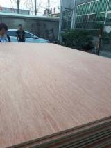 Chinese Rosewood / Poplar Natural Plywood