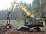 Softwood Logs Suppliers and Buyers - Radiata Pine Construction Grade Logs