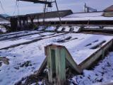 Finden Sie Holzlieferanten auf Fordaq - VKM GmbH - Rundholzplatz Sortieranlage mit Kappsäge