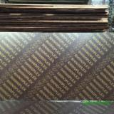 Plywood Supplies - Poplar Construction Film Faced Plywood