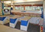 Used Schelling FW 430 1993 Horizontal Panel Saw For Sale Germany