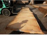 Hardwood  Unedged Timber - Flitches - Boules For Sale - KD Unedged Loose Cedar Planks