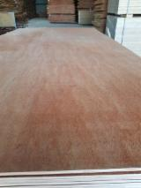 Plywood Supplies - AB Eucalyptus Core Plywood, 14.5 x 1220 x 2440 mm