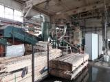null - Pellet Manufacturing Plant KAHL 1250 旧 波兰