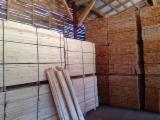 Nadelschnittholz, Besäumtes Holz Kiefer Pinus Sylvestris - Föhre - Kiefer  - Föhre, Fichte