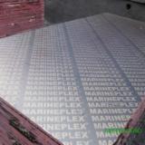 Trova le migliori forniture di legname su Fordaq - Compensato Filmato (Marrone)