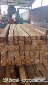 Laubschnittholz, Besäumtes Holz, Hobelware  Zu Verkaufen Brasilien - Balken, Teak