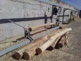 Pronađite najbolje drvne zalihe na Fordaq - Debarking Plant -- Nova Rumunija