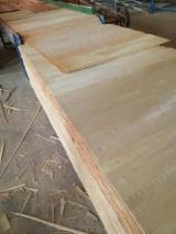 Plywood Panels  - Eucalytpus throughout Plywood