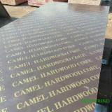 Plywood Panels  - China 18mm poplar core dynea film faced plywood