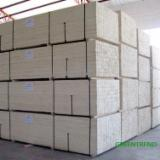 Veneer and Panels - Commercial poplar LVL plywood for formwork