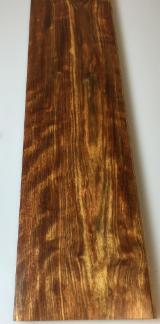 森林及原木 北美洲 - 锯木