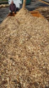 Wood Chips From Used Wood - Spruce  Wood Chips From Used Wood