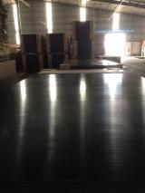 18 mm Acacia Film Faced Plywood
