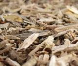 Energie- Und Feuerholz - Kiefer  - Föhre Sägemehl