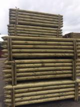 Softwood  Logs For Sale - FSC Pine Stakes, diameter 10; 12; 14 cm