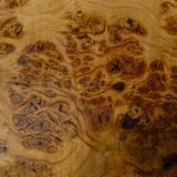 Elm Hardwood Logs - We Need Beech/ Elm/ Oak Logs