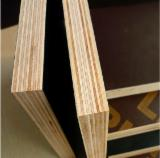 Buy or Sell Film Faced Plywood - Agathis Black Melamine Plywood