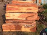 Kaufen Oder Verkaufen  Handelsvermittlung Für Holz Dienstleistungen - Handelsvermittlung, Elfenbeinküste
