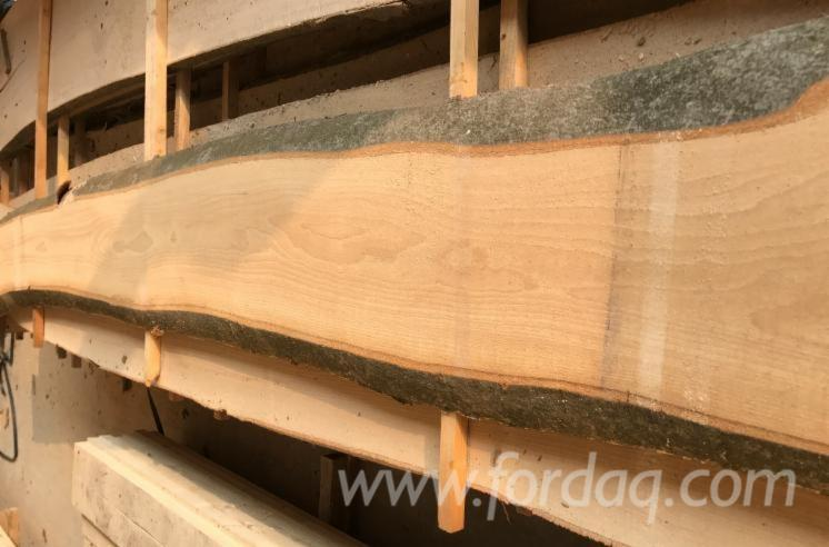 Unedge-Edge-Beech--Timber-From
