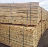 Schnittholz - Besäumtes Holz Zu Verkaufen - Europäische Schwarzkiefer, 55 - 1500 m3 pro Monat
