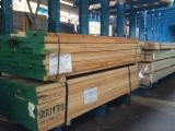Sawn and Structural Timber - Hard Maple Planks 52 mm