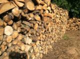 Firewood, Pellets And Residues - Oak Firewood/Woodlogs Not Cleaved