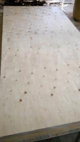 Plywood - Sell Eucalyptus Plywood BC grade