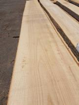 Hardwood  Unedged Timber - Flitches - Boules - Oak Boules 30-50 mm