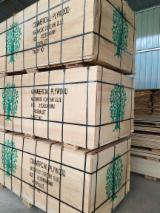 Großhandel  Natursperrholz - Natursperrholz, Ulme