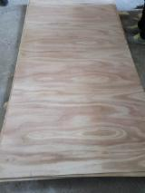 Flexible Paulownia Plywood, 4.5-10 x 1220 x 2440 mm
