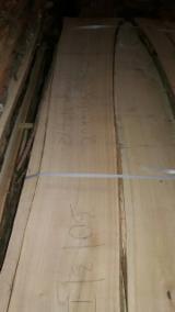 Eiche lose unbesäumtes Holz