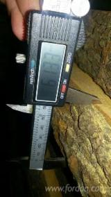 Vand Cherestea Netivita/bulzi Arin Negru Comun 50;  60;  80 mm