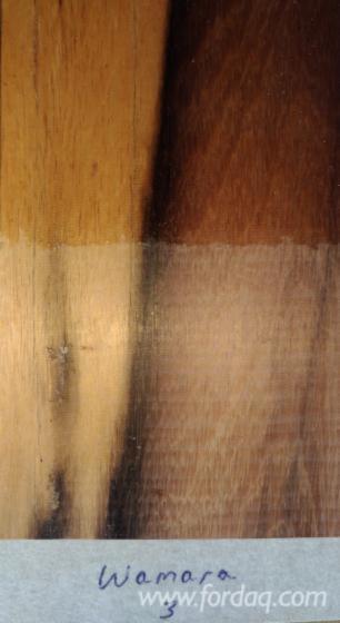 Schnittholzstämme, Amarante - Purpleheart, Greenheart, Mora