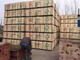 Holzverkauf - Jetzt auf Fordaq registrieren - Filmbeschichtetes Sperrholz (brauner Film), Pappel