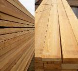 Larch  Sawn Timber - FSC Fresh / KD Larch Planks, 27-63 mm thick
