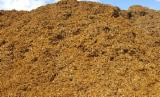 Yakacak Odun Ve Ahşap Artıkları - Ağaç Yongaları – Kabuk – Talaş Ormandan Ağaç Yongaları Western Red Sedir , Hemlock , Douglas Köknar, Oregon Çamı