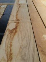 Hardwood Timber - Sawn Timber   Italy - Fordaq Online market - Oak Planks 26 mm