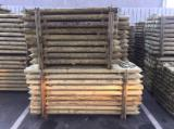 Softwood  Logs For Sale - AB Scots Pine Poles, 6-20 cm Diameter