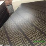 Cele mai noi oferte pentru produse din lemn - Fordaq - Vand Placaj Marin 2.5-30 mm China