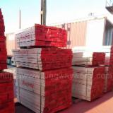 Beech  Unedged Timber - Boules importers and wholesale buyers - Beech Boules 22-38 mm