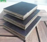 Plywood for Sale - 18 mm Acacia Black Film Faced Plywood for Construction